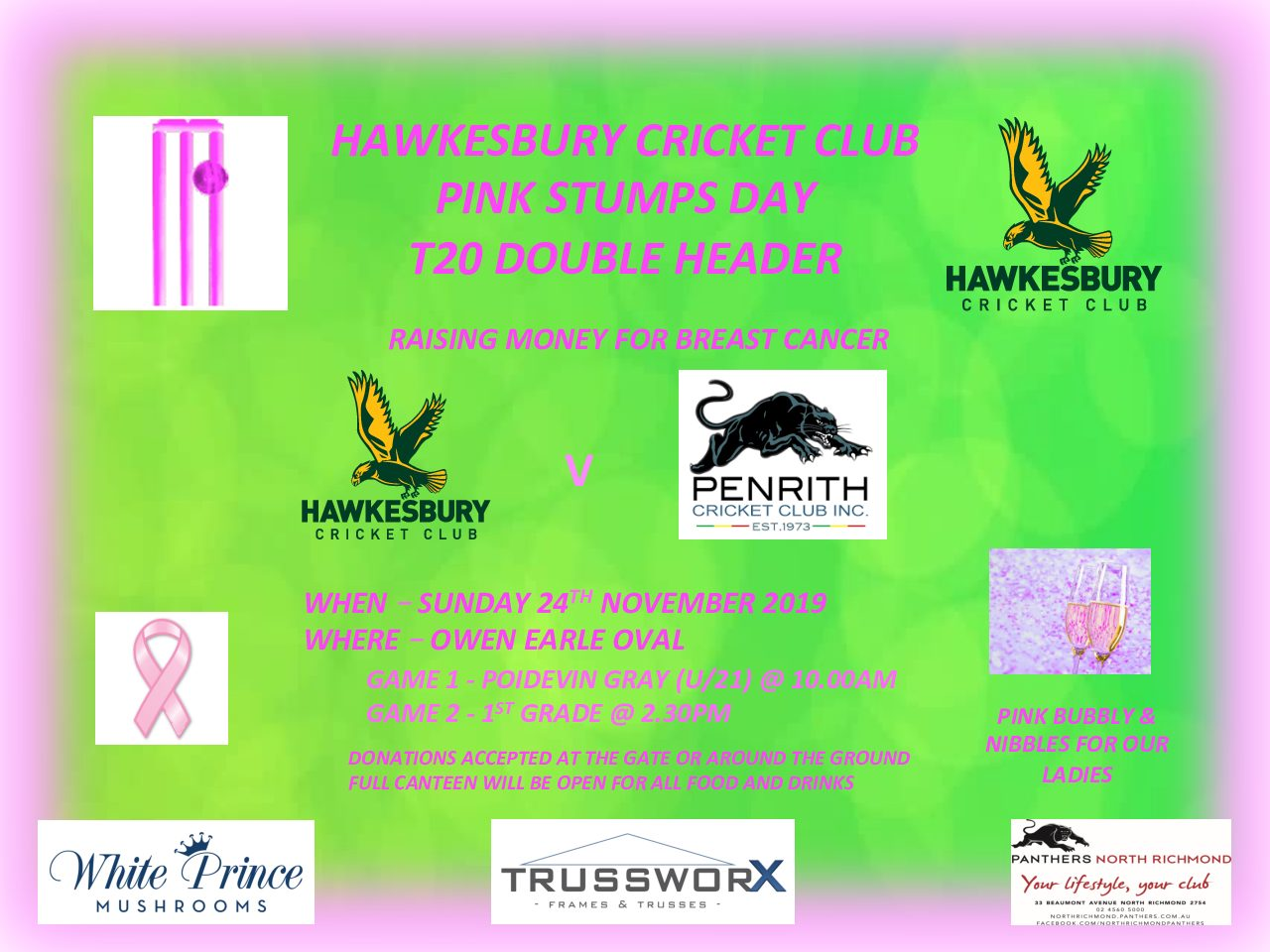PINK STUMPS DAY T20 AT OWEN EARLE OVAL THIS SUNDAY 24th NOVEMBER v PENRITH